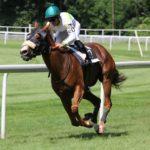 競馬と乗馬の違い