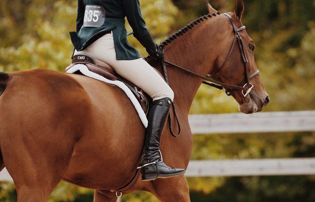乗馬の体重制限と年齢制限について