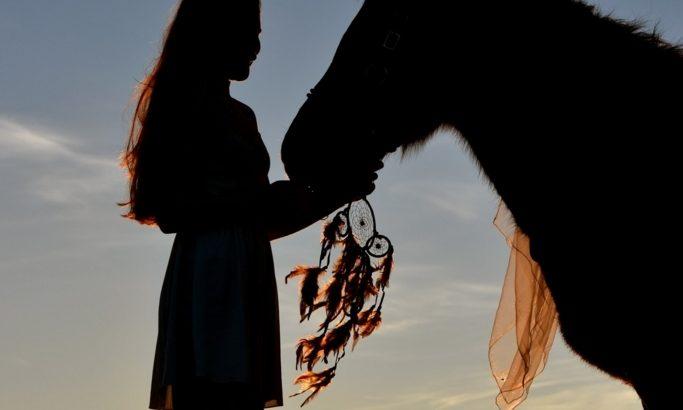 乗馬を始めるにはいくらかかるの?会費や月謝などを紹介