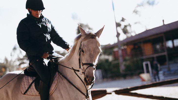 乗馬初心者に鞭は必要なのか?