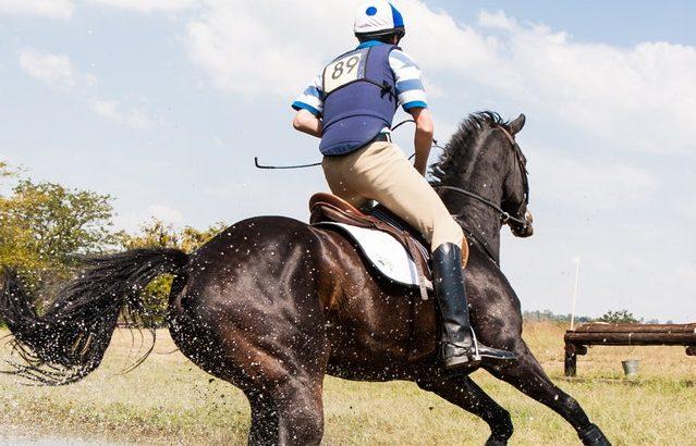 馬術の競技を説明